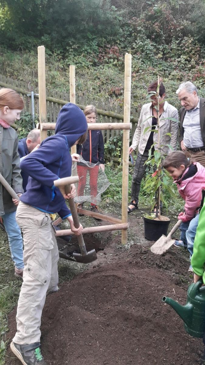 Bäume pflanzen in der Leonardo Schule Jena - 26.09.2019