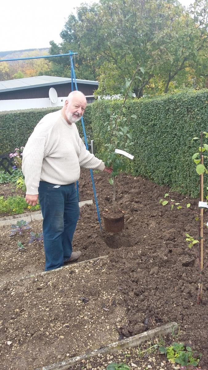 Hans-Ulrich Schrape hat gepflanzt - 20.10.2019