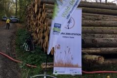 Thüringen pflanzt zusammen mit Dein Wald - 26.10.2019