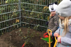 Sommerflieder für die Kinderbude in Zwätzen - 13.11.2019